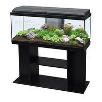 Aquarium 170 L