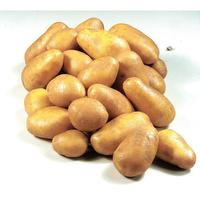 Pommes de terre Nicola