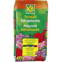 Terreau pour Géraniums