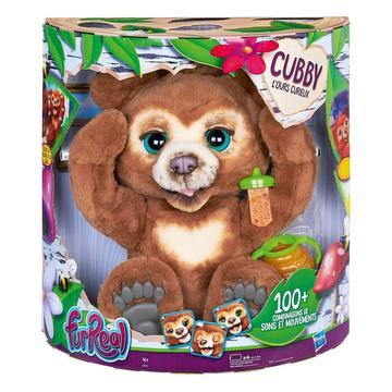 Cubby l'ours curieux